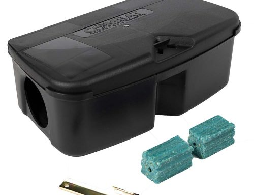 How to Use Bait Stations to Get Rid of Mice & Rats