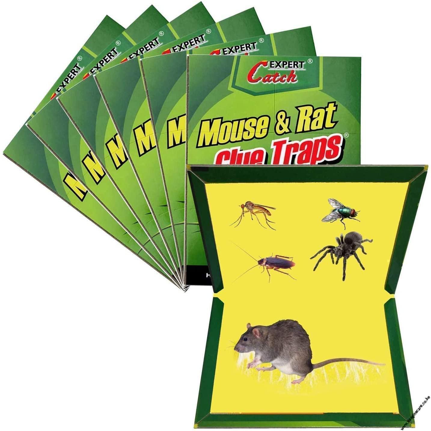 buy Rat & Mouse Glue Board in kenya