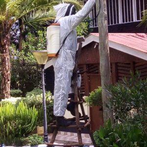 Bee_Suit_kenya-1