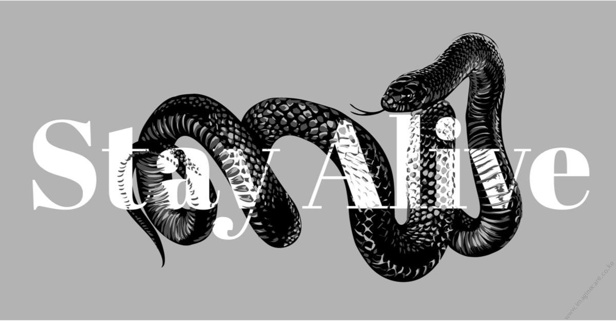 snake-repellent-kenya
