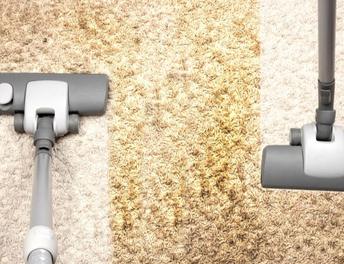 Advantages Of Regular Carpet Cleaning In Nairobi