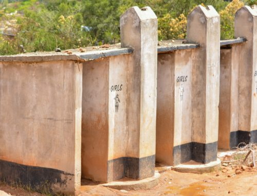 Pit Latrine & Sewage Digester Chemicals (**2021 Review**)