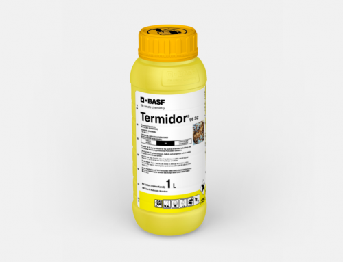 Termidor 96 SC Launched by BASF: The Ultimate Defence against Termites