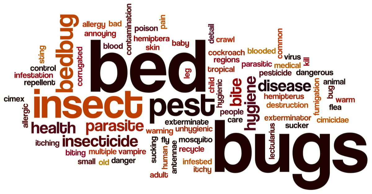 Non-chemical and Chemical Bedbug Treatments